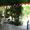 Отдых  Крыму!! Частный пансионат, 8-10 долл.  - Изображение #2, Объявление #241231