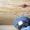 Шлифовка деревянных срубов - Изображение #2, Объявление #1265669