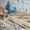 Реставрация и восстановление деревянного пола. #1497321