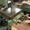 20-14-8060/2        BACCI Полуавтоматический долбёжный станок (б/у) - Изображение #4, Объявление #1701497