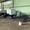 21-40-551 P.M.A Двусторонний шипорезный станок (б/у) #1713047