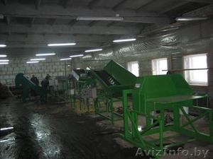оборудование-линия для переработки-мойки-сортировки-калибровки-фасовки овощей - Изображение #2, Объявление #353522