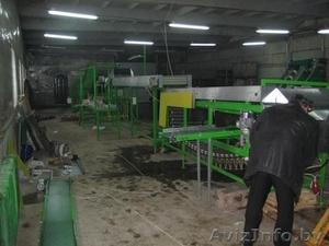 оборудование-линия для переработки-мойки-сортировки-калибровки-фасовки овощей - Изображение #4, Объявление #353522
