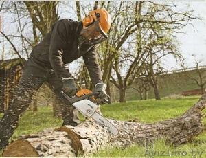 Покос травы, валка деревьев, вырубка кустарников - Изображение #2, Объявление #1109204