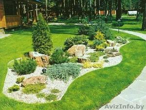 Укладка газона, земельные работы - Изображение #1, Объявление #1539109
