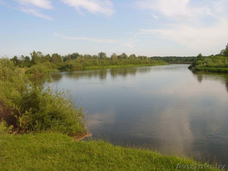 река клева гродненская область