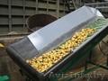 оборудование-линия для переработки-мойки-сортировки-калибровки-фасовки овощей - Изображение #3, Объявление #353522