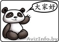 Перевод текста с/на китайский язык