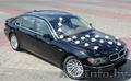 BMW 750 Е65 Long. Прокат VIP авто для свадебного кортежа - Изображение #3, Объявление #797956