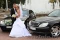 Свадебный кортеж, машины для свадьбы минск. , Объявление #881826