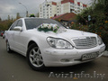 Свадебный кортеж, машины для свадьбы минск.  - Изображение #2, Объявление #881826