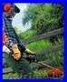 Покос любой травы,бурьяна. - Изображение #2, Объявление #919190