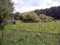 Дачный участок 34 км от МКАД, д. Петришки, Объявление #933017