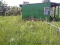 Дачный участок 34 км от МКАД, д. Петришки - Изображение #4, Объявление #933017