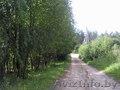 Продам дачу в 23 км от Минска - Изображение #2, Объявление #1066835