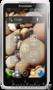 Новые телефоны Lenovo S890 т. синий/белый