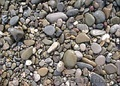 Морская и речная галька в мешках,  разные цвета и размеры камня,  доставка.