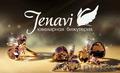 Бижутерия Jenavi оптом,  мелким оптом