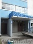 1к квартира в Минске, Объявление #1364968