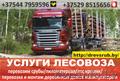 Услуги лесовоза. Пиломатериалы., Объявление #1469020