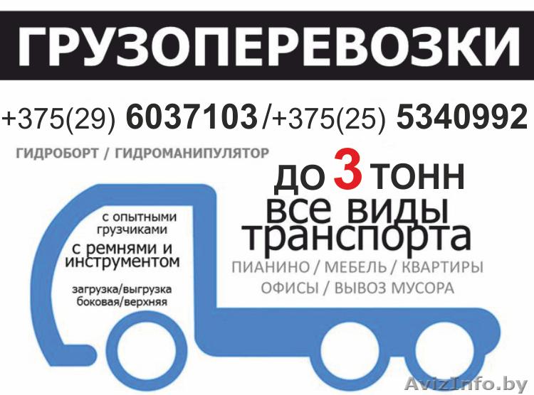 Грузоперевозки по Минску и Беларуси до 3 тонн, Объявление #1401775
