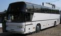 Аренда автобусов от СтарБусТранс - Изображение #3, Объявление #1495225