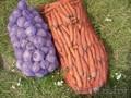 Овощи белорусские оптом