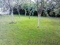 Посев дачного газона - Изображение #3, Объявление #1547505