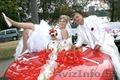 Фото и видеосъёмка торжеств,  свадеб