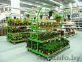 Торговые стеллажи (для АКБ, стеклоомывателей, автомобильных масел) - Изображение #5, Объявление #1577806