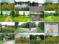 Продам участок 7 соток в с/т Чаровница 33 км.от Минска.  - Изображение #2, Объявление #1575762