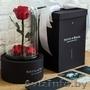Роза в стеклянной колбе PREMIUM (28 см), Объявление #1606641