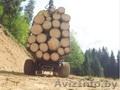 Лесовозный полуприцеп 13D с манипулятор 5.72 PALMS - Изображение #2, Объявление #1601258