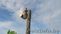 Профессиональное удаление деревьев любой сложности по всей Беларуси - Изображение #2, Объявление #1612830