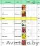 Продам цветы луковичные и клубниевые, семена овощей и цветов, Объявление #1609165