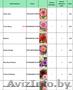 Продам цветы луковичные и клубниевые, семена овощей и цветов - Изображение #2, Объявление #1609165