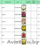 Продам цветы луковичные и клубниевые, семена овощей и цветов - Изображение #3, Объявление #1609165