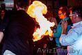 Шоу жидкий азот, азотное шоу Минск, шоу на свадьбу, крио шоу - Изображение #8, Объявление #1639139