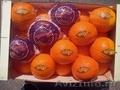 Свежие фрукты оптом из Испании