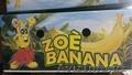 зеленые бананы оптом